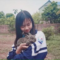 Thùy Dương Love Lin